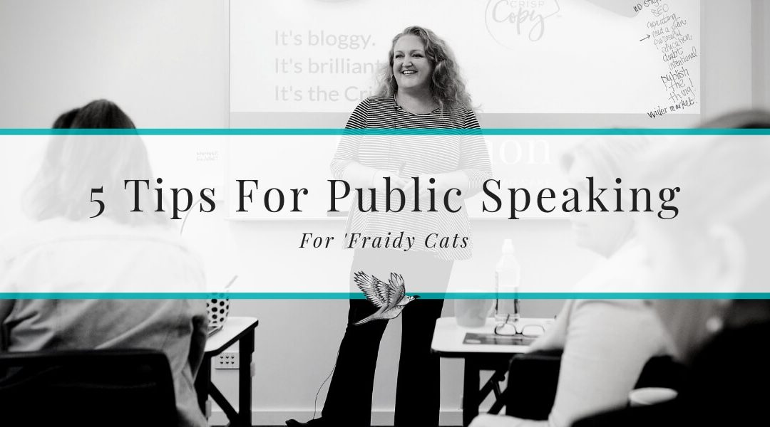 5 Tips on Public Speaking for Scaredy Cats